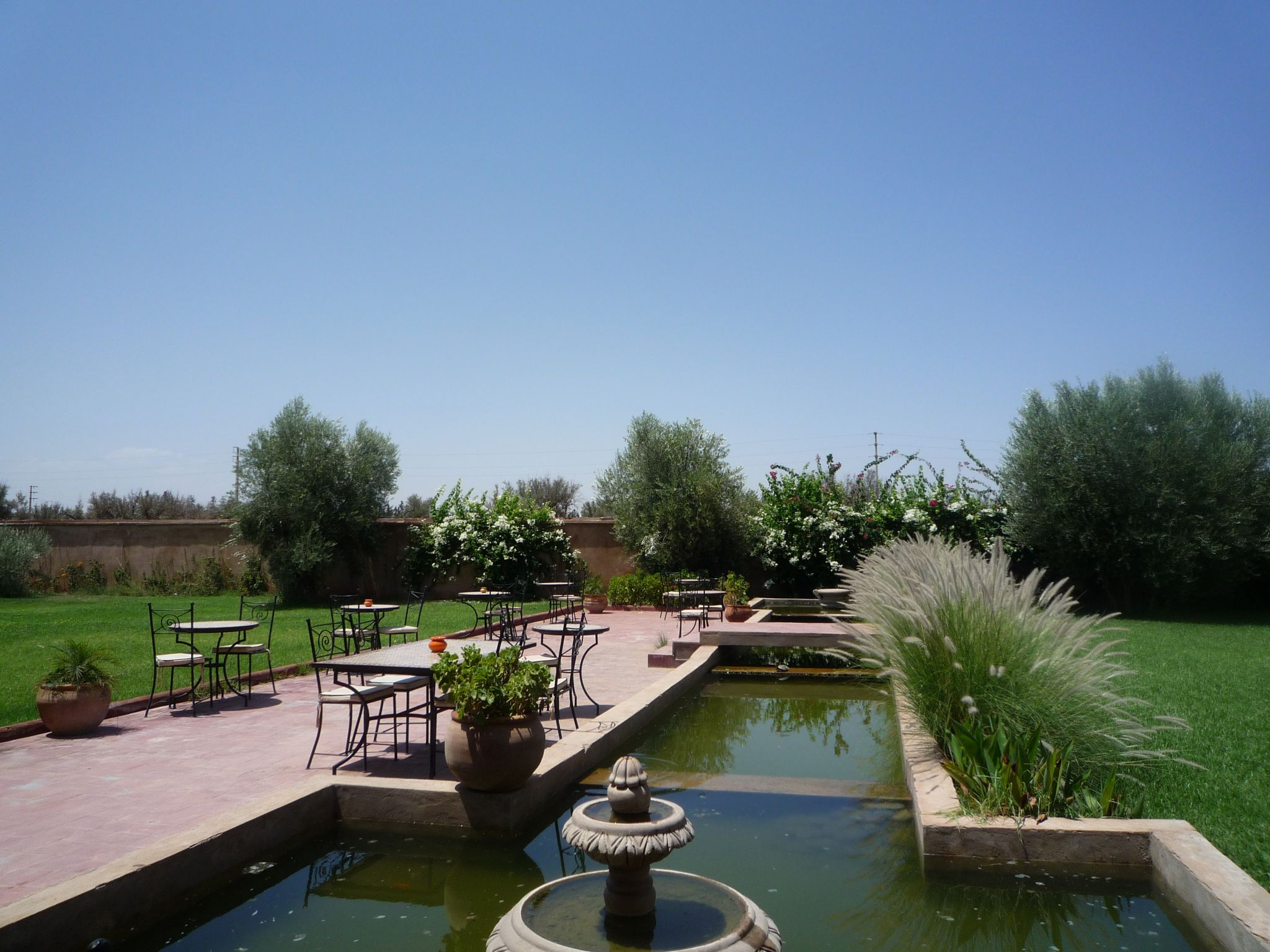 The gardens within the hotel